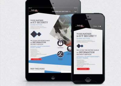 Twelvesec Website & Prints